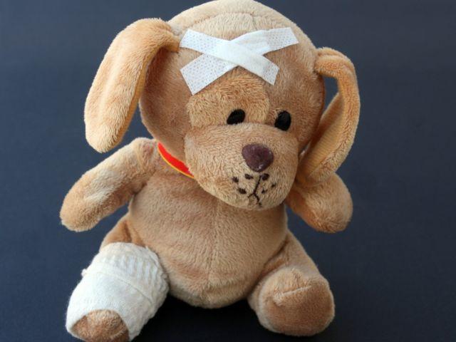 teddy-242851